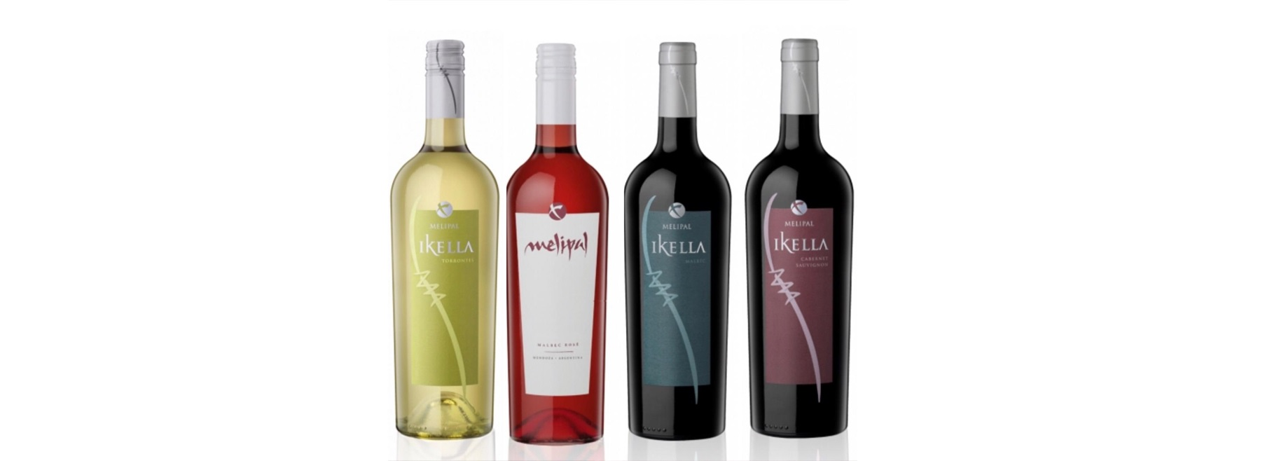 Apes promove degustação de vinhos para associados